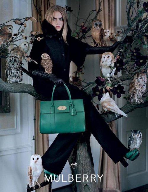 Cara Delevingne Photo (Кара Дельвинь Фото) британская модель / Страница - 3